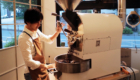 Gumtree Coffee Roaster